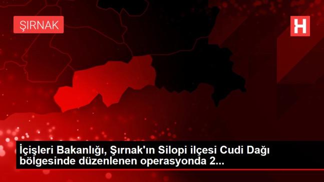 İçişleri Bakanlığı, Şırnak'ın Silopi ilçesi Cudi Dağı bölgesinde düzenlenen operasyonda 2…